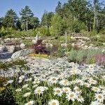 Boothbay: Costal Maine Botanical Gardens