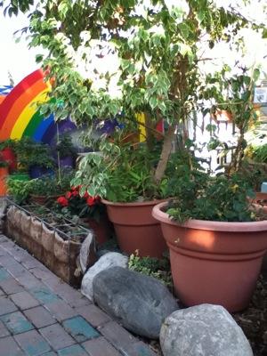 Michigan State 4H Childrens Garden butterfly_habitat