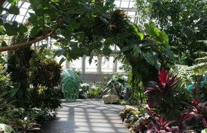 Children's Garden, Garfield Conservatory