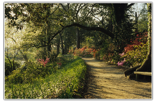 gardens_slopewalk