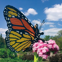 A swallowtail butterfly with a 5-foot wingspan built with LEGOs.