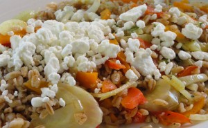 fennel-farro-salad_0