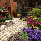 Media courtesy of the Chicago Flower & Garden Show